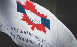 Photo du drapeau du SDI